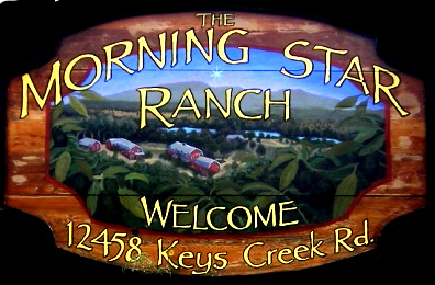 Welcome To The Morning Star Ranch